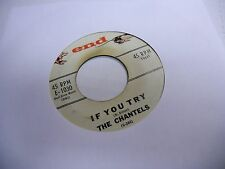 The Chantels If You Try/Congratulations 45 RPM End Record VG