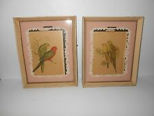 """VINTAGE  10 3/4"""" X 8 3/4"""" FRAMED  PAIR OF BIRD (PARROTS) PICTURES"""