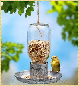 Hanging Glass Mason Jar Bird Feeder Seed Food Wildlife Outdoor Yard Accessories