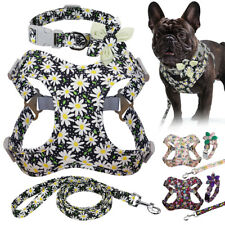 Fashionable Floral Dog Harness Collar and Leash Set Soft Step-In Walking Collar