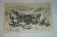 1878 magazine engraving ~ DROVE OF MULES AND ASSES, Spain