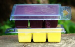 6pk 100hr RUM, CAMPFIRE SMOKE & PATCHOULI Scented SOY WAX CLAM MELTS for Burner