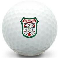 3 Dozen Nike Mix Mint / AAAAA (Caddyshack LOGO) Used Golf Balls