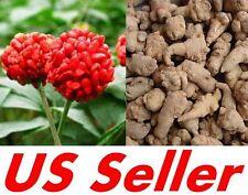 20 PCS Seeds, G17 Panax Notoginseng Medicinal San Qi Tienchi, US Seller