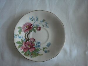 Royal Tudor Ware Barker Bros - 6 Plates, 5 Saucers & 4 cups in a floral pattern
