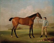 "1774 - George Stubbs, antique, Horse, Pumpkin, Stable-lad, 20""x16"" Art Print"