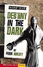Destiny in the Dark (Dark Man (Stone Arch))