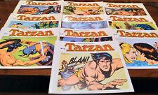 Tarzan: Tiras diarias de Tarzan
