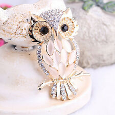 Big Owl Brooches Bouquet Vintage Wedding Hijab Scarf Pin Up Buckle Broches TSUS