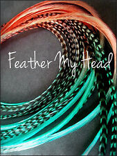 "Feather Extensions Multi Colored TwoTone Tye Dye 10 Pc Long 9'-12"" / 22.86-30.48"