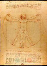 Poster A3 El Hombre De Vitruvio Da Vinci 01
