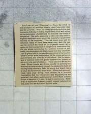 1887 Upon Hearing The Loss Of The Kapunda