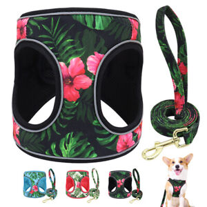 Reflective Dog Step-in Harness and Leash Soft Mesh Pet Vest for Small Medium Dog