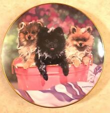 """Michele Amatrula Limited Edition """"Squeaky Clean"""" Collector Plate # A790 Danbury"""