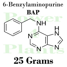 6-Benzylaminopurine 25g 99% BAP 6 Cytokinin Plant Hormone Growth Regulator