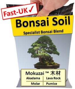 1-3L Bonsai Tree Soil Mix - Akadama, Pumice, Moler & Lava Rock Potting Blend