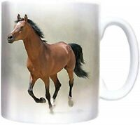 4 Set Beautiful Horses Coaster Equine Mustang Pony Gallop Fun Gift #8536