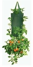 Vertical Herbs Flowers Seedlings Fresh Salads Growing Hanging Barrel 30 Plants