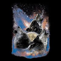 Space Wolves Pick Your Size Youth Medium to Size 6 X Large T-Shirt