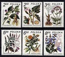 2454. POLAND 1974 FLOWERS **MNH