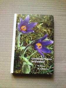 Geschütze Pflanzen im Rheinland - (KW93)/3