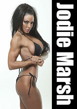Jodie Marsh 1 Sexy English Poster Media Personality Bodybuilder Glamour Model