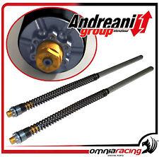 Kit Modifica Forcella Andreani Group Suzuki Gladius SFV 650 2009 > Fork Kit