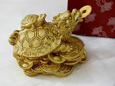 CHINESE GOLD WEALTH LUCK DRAGON HEADED FENG SHUI TURTLE TORTOISE COIN PARTY GIFT