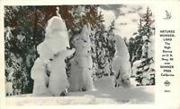 Donner Pass California High Sierras Winter Frasher 1940s RPPC Postcard 21-2184