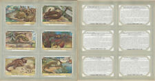 New listing Liebig, Set 6 Cards, F1482, 1949, Curious Reptiles, Turtle, Lizard, Snake