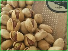 pistacchi in guscio naturale tostato e salato lavorazione artigianale di sicilia