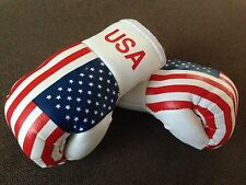 USA AMERICA AMERICAN FLAG Mini Boxing Gloves