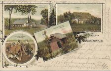 Gruß aus dem Hohenwald ( Böhmen ) Litho 1903 Forsthaus, Jub. Schutzhütte usw...