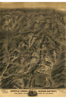 Map of Cripple Creek Mining District, Colorado 1895; Antique Birdseye Map