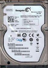 ST9250315AS P/N: 9HH132-035 F/W: D003DEM1 SU 6VC Seagate 250GB