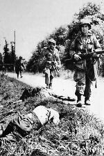WW2 - Photo -Les paras américains découvrent des Allemands morts dans les fossés