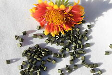 8/0 Triangle Toho Glass Seed Beads 3-Matte-Color Dark Olive  14 grams # 617
