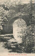 Mullica Hill NJ * Arch Bridge ca. 1906 * Gloucester Co.