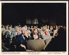 Geraldine Page Rip Torn Sweet Bird of Youth 1962 original movie photo 19643