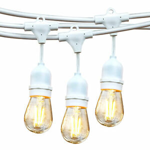 Brightech Ambience Pro Edison White LED Waterproof Outdoor String Lights, 48 Ft.