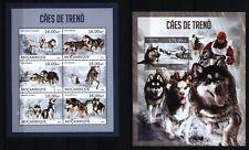 Mosambik Mozambique 2013 - Schlittenhunde - Siberian Husky Malamute - Sled dogs