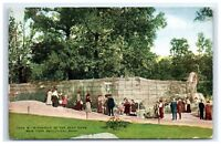 Postcard A Portion of the Bear Dens, NY Zoological Park G13