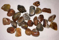 Lake Superior Agate Polished Stone Rock Red w/ Crystal Bands Eye Spots 18 -20 g