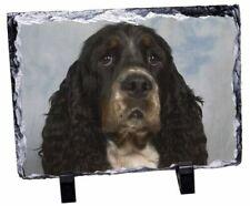 Springer Spaniel Dog Photo Slate Christmas Gift Ornament AD-SS77SL
