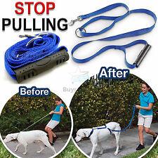 Anti-Pull Dog Harness Walking Lead Collar Leash Trainer Anti Pull Train All Dogs