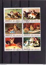 Angola wunderschöner Zusammendruck Katzen