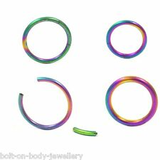 Seamless Rainbow Anodised Segment Ring Hoop - 16g or 14g - 8mm, 10mm, 12mm