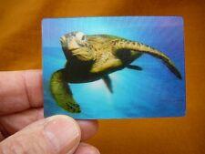 (MAG-2) 3D MAGNET Fridge refrigerator photo Green reef Sea turtle ocean turtles
