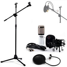 Professional Studio Sound Recording Condenser Microphone with Boom Stand Filter
