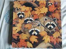 Roving Rascals Vintage Raccoons Jigsaw Puzzle By Springbok